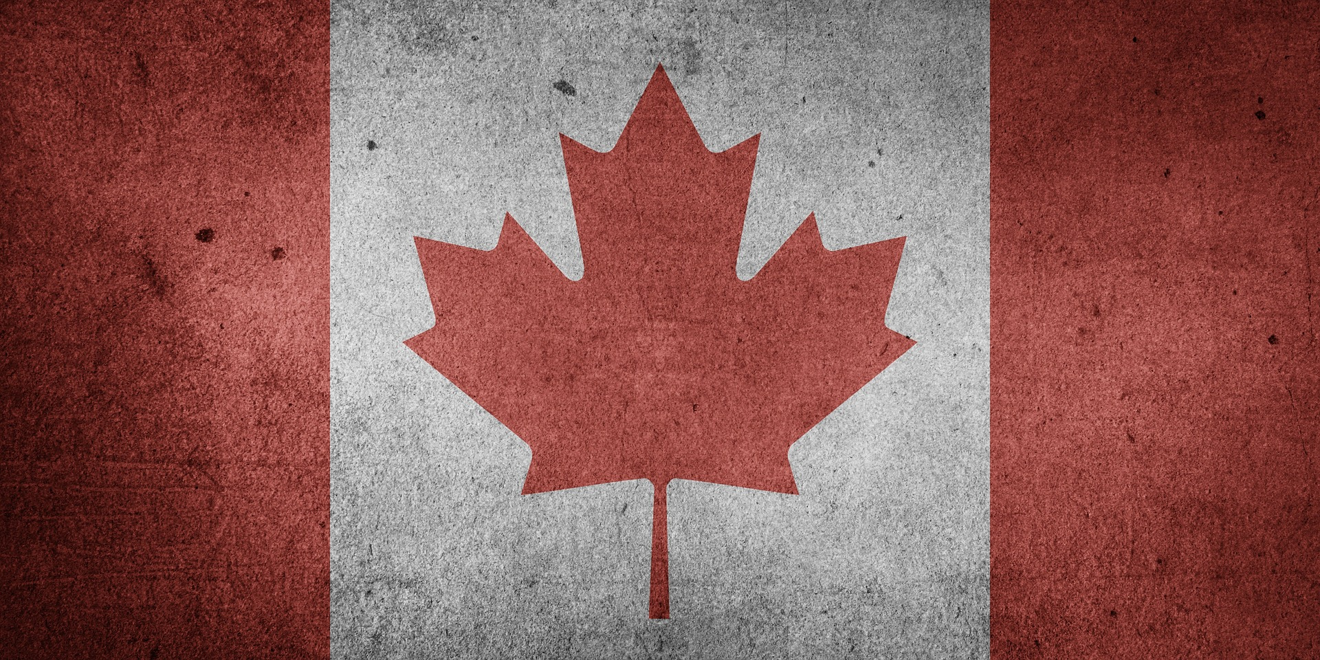 A picture of the Canadian flag.